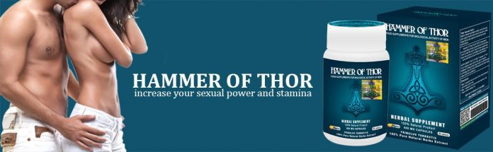 Hammer of Thor - mode d'emploi - pas cher - achat - composition